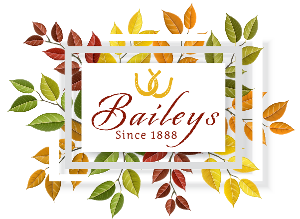 Baileys Palomar Lodging & Event Center